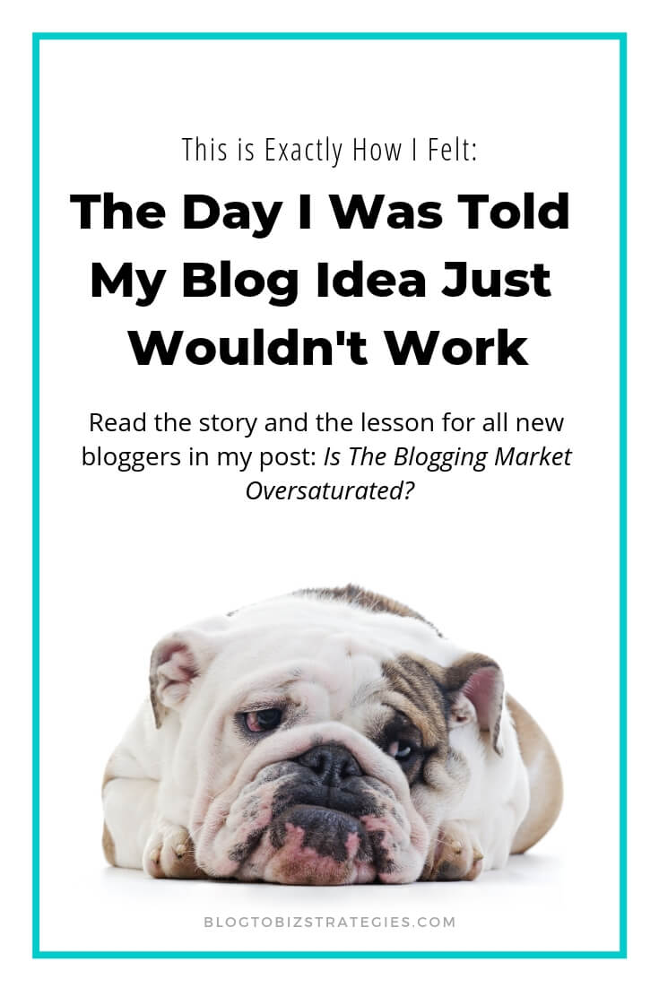 Blog to Biz Strategies | This Is How I Felt When I Was Told My Blogging Market Was Oversaturated
