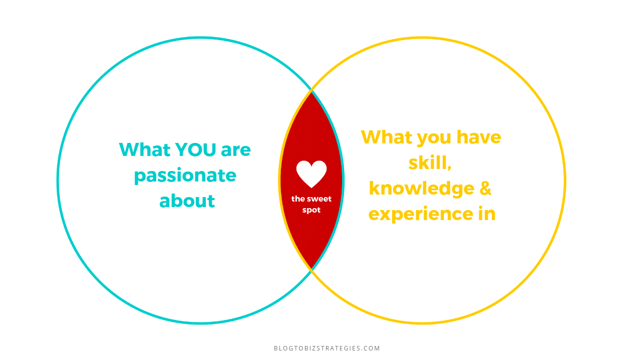 Blog to Biz Strategies | Your Passion + Your Skill, Knowledge, Experience + Sweet Spot