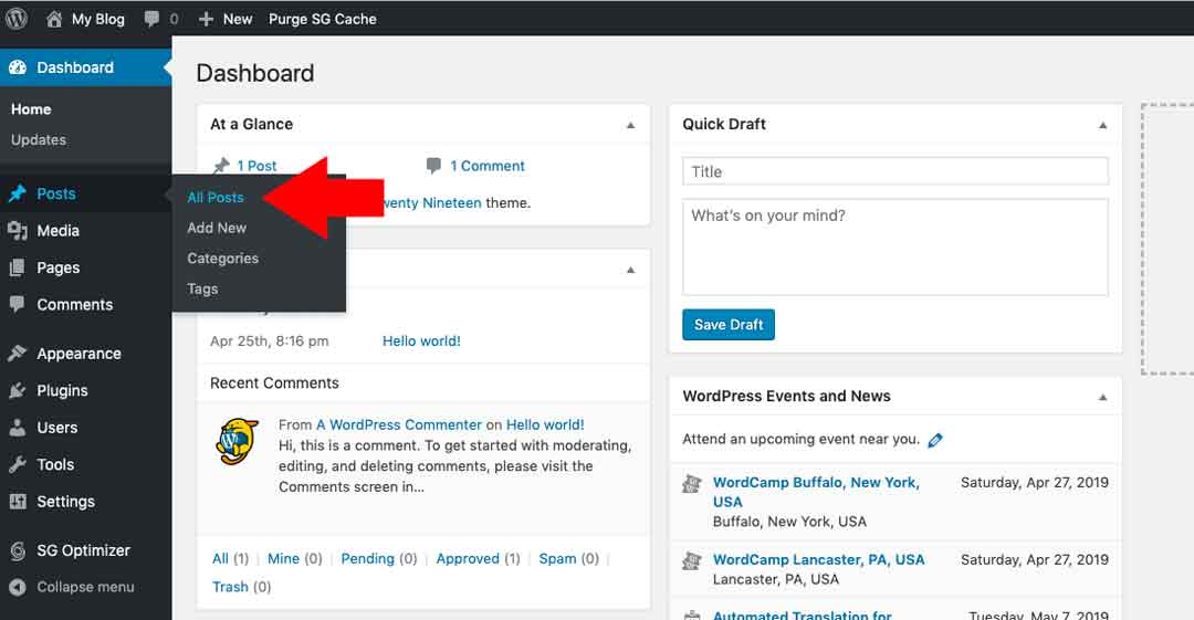 Blog to Biz Strategies | Clean Up WordPress install step 7